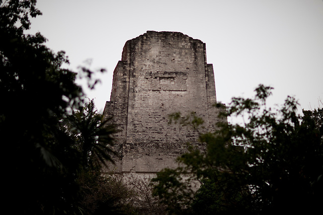 """Archeological site """"Tikal"""" insite the Mayan Biosphere Reserve."""
