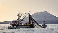 2015 Sitka Sound Sac-Roe Herring Fishery