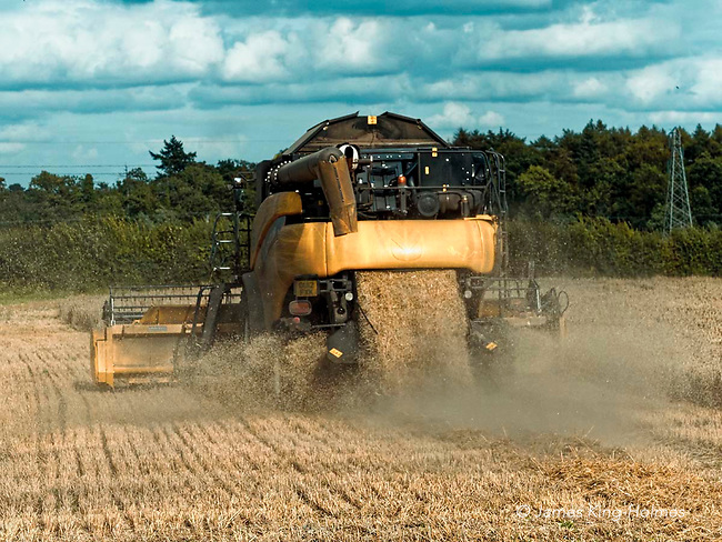 Combine harvester works in an Oxfordshire wheat field