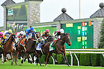 17 October 2009: The field passes the wire the first time around in the G1Queen Elizabeth Stakes at Keeneland Race Course in Lexington, KY