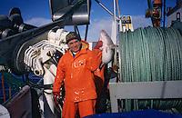 """Europe/Norvège/Iles Lofoten: Peche au Skrei - Cabillaud sur le bateau """"Stottvaring"""""""