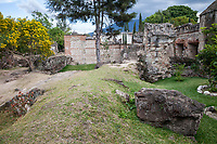 Antigua, Guatemala.  Ruins of the Church  and Monsatery of  San Francisco, destroyed by earthquake in 18th. century.