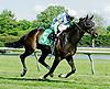 Cocodimama winning at Delaware Park on 6/6/12