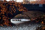 Boston, Cambridge, Massachusetts, Autumn, Rowing, Women rowers beneath the JF Kennedy - Anderson Street bridge, Head of the Charles Regatta,