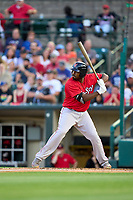Worcester Red Sox Josh Ockimey (30) bats during a game against the Rochester Red Wings on September 4, 2021 at Frontier Field in Rochester, New York.  (Mike Janes/Four Seam Images)