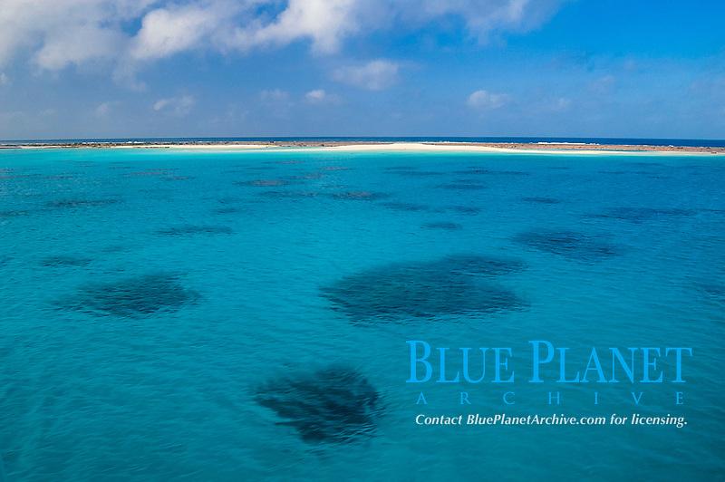 aerial view of lagoon and coral reef edge, Marion Reef, Coral Sea Marine Park, Australia, Coral Sea, Pacific Ocean