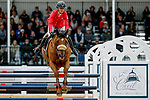 October 17, 2021: Jessica Phoenix (CAN), aboard Bogue Sound, competes during the Stadium Jumping Final at the 5* level during the Maryland Five-Star at the Fair Hill Special Event Zone in Fair Hill, Maryland on October 17, 2021. Jon Durr/Eclipse Sportswire/CSM