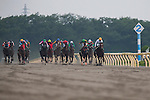 TOKYO,JAPAN-JUNE 19: Gold Dream #12,ridden by Yuga Kawada (green cap,right),is aiming to win the Unicorn Stakes at Tokyo Racecourse on June 19,2016 in Fuchu,Tokyo,Japan (Photo by Kaz Ishida/Eclipse Sportswire/Getty Images)