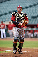 Arizona Diamondbacks catcher Luke Lowery (46) during an instructional league game against the San Francisco Giants on October 16, 2015 at the Chase Field in Phoenix, Arizona.  (Mike Janes/Four Seam Images)