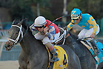 #4 Sheltowee's Boy with jockey Joshua Navarro edging out the #9 Z Lucky with Joel Rossario during the allowance 8th race at Oaklawn Park in Hot Springs, Arkansas on February 17, 2014. (Credit Image: © Justin Manning/Eclipse/ZUMAPRESS.com)