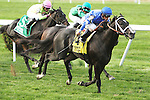September 28, 2014: Imperia with Javier Castellano win the Grade III Pilgrim Stakes for 2-year olds, going 1 1/16 mile on the turf, at Belmont Park. Trainer: Kiaran McLaughlin. Owner: Godolphin . Sue Kawczynski/ESW/CSM