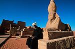 Sphinx devant le temple de Wadi Es Seboua dédié au pharaon
