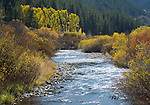 Idaho,Eastern, Swan Valley. Pine Creek in teh Caribou-Targhee National Forest seperates the Big Hole Mountains from the Snake River Range.