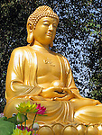 Buddha Statue at temple in Xian, China.