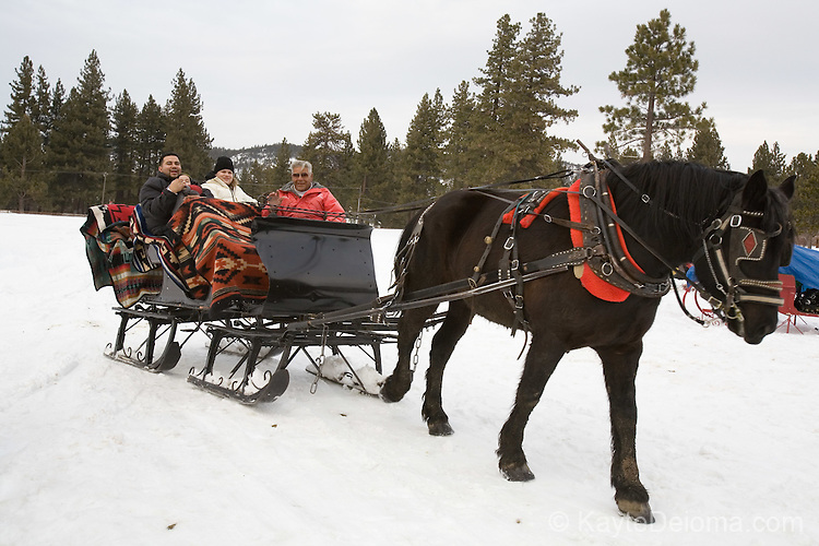 Family with Sam Borges on the Borges Family Sleigh Ride,  Lake Tahoe, Nevada.