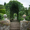 Apple tunnel, Town Place, late June. Looking from the East Lawn up brick steps to the Herb Garden.