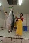 Yellowfin tuna brought in to the Nutrindo Tuna Factory from the fishing boat outside for chlorine bath disinfecting before it is brought in for export processing.