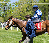 3rd Middleburg Hunt Cup timber stakes - Mystic Strike