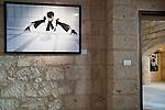 """Lecce - 17 dicembre 2011 - Mostra di Uli Weber aperta dal 16 dicembre 2011 al 15 gennaio 2012 e che ha consentito di ammirare gli scatti di Weber che celebrano Lecce e il Salento. Come location è scelto scelto lo splendido Palazzo Vernazza restituito al pubblico dopo un lunghissimo periodo di restauro. L'evento ha dato l'opportunità imperdibile per osservare da vicino i """"portraits"""" che l'artista di origini tedesche ha realizzato con artisti di fama internazionale e italiana: da Bruce Willis a Sting, da Hugh Grant a Daniel Radcliffe, poi Kylie Minogue, Boy George, Robbie Williams, Raul Bova, Carmen Consoli, Achille Castiglioni, Gianna Nannini, Giorgia e Paola Cortellesi. Una prestigiosa raccolta di ritratti scattati nei vent'anni di carriera e tratti dall'omonimo libro pubblicato da Skira nel 2010. Uli Weber è uno dei pochi fotografi tra quelli che sono riusciti ad imporsi in stili di fotografia differenti: moda, reportage di viaggio, pubblicità. A Lecce è stato possibile osservare una straordinaria selezione di fotografie che documentano la sua ventennale carriera: immagini di grande bellezza, ma al tempo stesso divertite, piacevoli, fresche, apprezzate tanto dai cultori dell'arte commerciale quanto dagli appassionati dello sfavillante mondo delle celebrità."""
