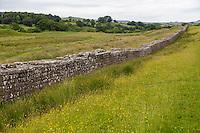 Cumbria, England, UK.  Hadrian's Wall Heading Eastward from Birdoswald Fort, Hadrian's Wall Footpath.
