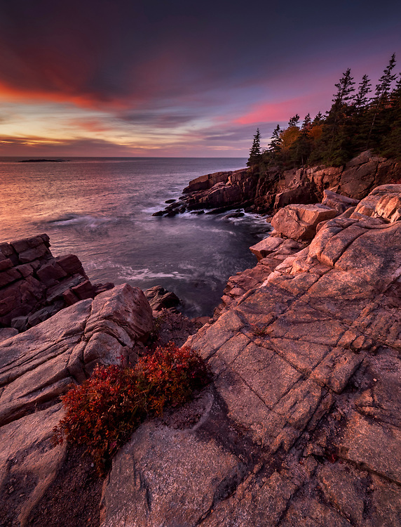 View of rugged granite coastline at sunrise along the Park Loop Road in Acadia National Park, Maine, USA
