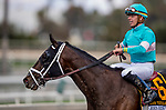 September 30 2018 : Liam the Charmer with Tyler Gaffalione wins the John Henry Stakes at Santa Anita Park on September 30, 2018 in Arcadia, California. Evers/ESW/CSM