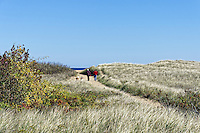 Couple walking dogs on beach path, Plum Island, Massachusetts, USA.