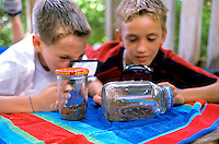 Two young boys in tree house with looking at bugs in a bottle with magnifying glass