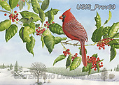 Ingrid, CHRISTMAS SYMBOLS, WEIHNACHTEN SYMBOLE, NAVIDAD SÍMBOLOS, paintings+++++,USISPROV39,#xx#