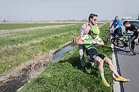crash for Wouter Wippert (NED/Cannondale-Drapac)<br /> <br /> 79th Gent-Wevelgem 2017 (1.UWT)<br /> 1day race: Deinze › Wevelgem - BEL (249km)