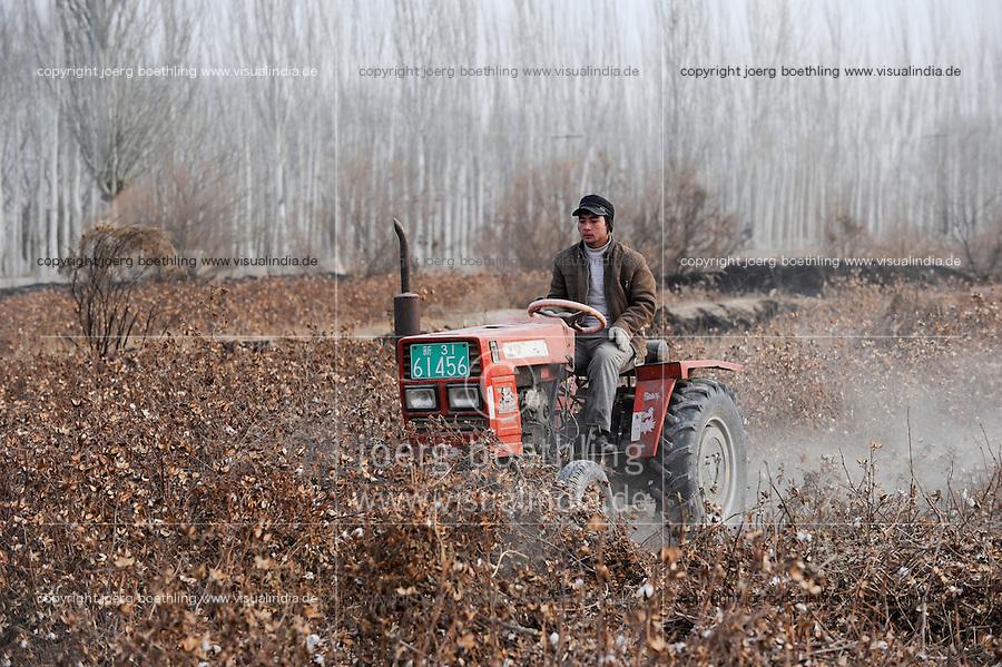 Asien CHINA Provinz Xinjiang Kashgar , uigurischer Bauer reisst Baumwollpflanzen nach Ernte mit Traktor aus dem Boden / CHINA province Xinjing Kashgar , uyghur farmer with tractor removes cotton plants after harvest in farm