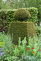 Yew topiary, Brewin Dolphin Garden, Cleve West, RHS Chelsea Flower Show 2012.