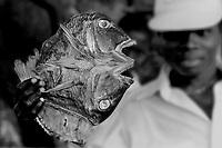 la pesca tradizionale in Mozambico.Mercato di Pemba