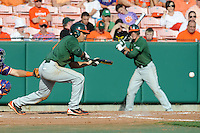 Shortstop Stephen Perez #4 lays down bunt during a  game against the Clemson Tigers at Doug Kingsmore Stadium on March 31, 2012 in Clemson, South Carolina. The Tigers won the game 3-1. (Tony Farlow/Four Seam Images).