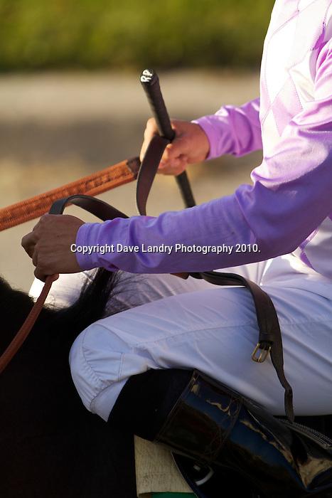 Thoroughbred Racing 2010