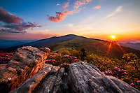 Spring sunset and blooming Catawba rhododendron, Jane Bald