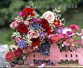 Interlitho, FLOWERS, BLUMEN, FLORES, photos+++++,KL16446,#f#
