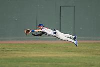 Stockton Ports center fielder Skye Bolt (9) dives to make a catch during a California League game against the Visalia Rawhide at Visalia Recreation Ballpark on May 8, 2018 in Visalia, California. Stockton defeated Visalia 6-2. (Zachary Lucy/Four Seam Images)