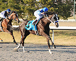 Black Onyx wins the Horseshoe Casino Cincinnati Spiral Stakes at Turfway Park with Joe Bravo up for trainer Kelly Breen and owner Sterling Racing.March 23, 2013 (( Special transmission of horses in the Top 25 for points for the 2013 KentuckyDerby ))
