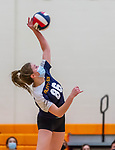 PLYMOUTH, CT-111020JS15 —Wolcott Tech's Rachel Heaney (86) spikes the ball during their match against Terryville Tuesday at Terryville High School. <br /> Jim Shannon Republican-American