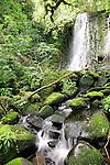 Matai Falls, Catlins, New Zealand