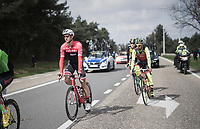 Edward Theuns (BEL/Trek-Segafredo)<br /> <br /> 105th Scheldeprijs 2017 (1.HC)<br /> 1 Day Race: Mol › Schoten (BEL/202km)