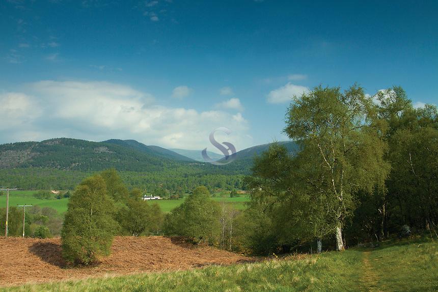 Countryside near Cambus o' May, Aberdeenshire