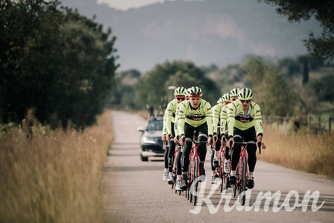 John DEGENKOLB (DEU/Trek-Segafredo) & Jasper STUYVEN (BEL/Trek-Segafredo) leading the classics squad<br /> <br /> Team Trek-Segafredo men's team<br /> training camp<br /> Mallorca, january 2019<br /> <br /> ©kramon