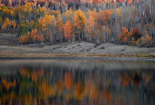 Fall colors are reflected in the calm waters of Kolob Reservoir in Southern Utah