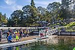 Rowing 2017 American Lake Fall Classic
