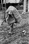 Farmer farming Uk England 1970s Gloucestershire  Dairy farmer with cattle cows.The Cotswolds, Upper Slaughter, Gloucestershire  Lower and Upper Slaughter are twin villages on the River Eye and are know as The Slaughters.  <br /> <br />  Mr Kenneth Pugh.