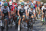 Maciej Bodnar (POL), Marcus Burghardt (GER) and Cesare Benedetti (ITA) Bora-Hansgrohe during the 112th edition of Milan-San Remo 2021, running 299km from Milan to San Remo, Italy. 20th March 2021. <br /> Photo: Bora-Hansgrohe/Luca Bettini/BettiniPhoto | Cyclefile<br /> <br /> All photos usage must carry mandatory copyright credit (© Cyclefile | Luca Bettini/BettiniPhoto/Bora-Hansgrohe)
