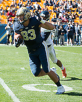 Pitt tight end Scott Orndoff scores on a 37-yard touchdown catch. The Pitt Panthers football team defeated the Virginia Cavaliers 26-19 on Saturday October 10, 2015 at Heinz Field, Pittsburgh, Pennsylvania.