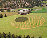 UFO over Crop Circle